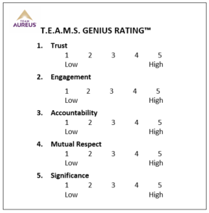 rating scale for teams to use